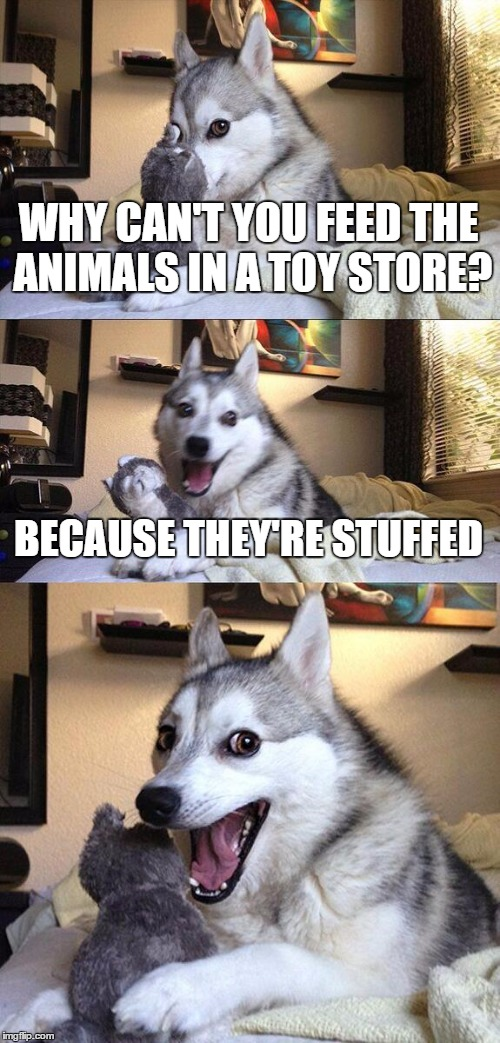 Bad Pun Dog Meme | WHY CAN'T YOU FEED THE ANIMALS IN A TOY STORE? BECAUSE THEY'RE STUFFED | image tagged in memes,bad pun dog | made w/ Imgflip meme maker