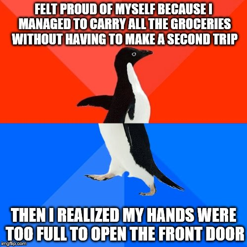 Socially Awesome Awkward Penguin |  FELT PROUD OF MYSELF BECAUSE I MANAGED TO CARRY ALL THE GROCERIES WITHOUT HAVING TO MAKE A SECOND TRIP; THEN I REALIZED MY HANDS WERE TOO FULL TO OPEN THE FRONT DOOR | image tagged in memes,socially awesome awkward penguin | made w/ Imgflip meme maker