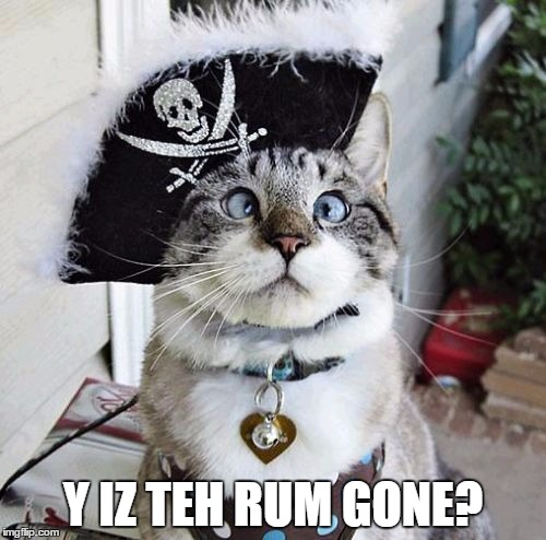 Spangles | Y IZ TEH RUM GONE? | image tagged in memes,spangles | made w/ Imgflip meme maker