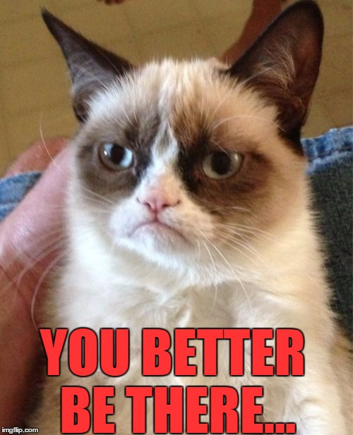Grumpy Cat Meme | YOU BETTER BE THERE... | image tagged in memes,grumpy cat | made w/ Imgflip meme maker