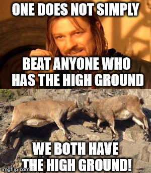 One does not simply |  ONE DOES NOT SIMPLY; BEAT ANYONE WHO HAS THE HIGH GROUND; WE BOTH HAVE THE HIGH GROUND! | image tagged in boromir,one does not simply,memes,the high ground,animals,fight | made w/ Imgflip meme maker