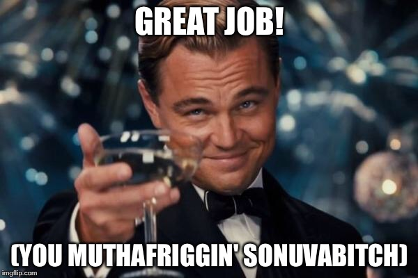 Leonardo Dicaprio Cheers Meme | GREAT JOB! (YOU MUTHAFRIGGIN' SONUVAB**CH) | image tagged in memes,leonardo dicaprio cheers | made w/ Imgflip meme maker