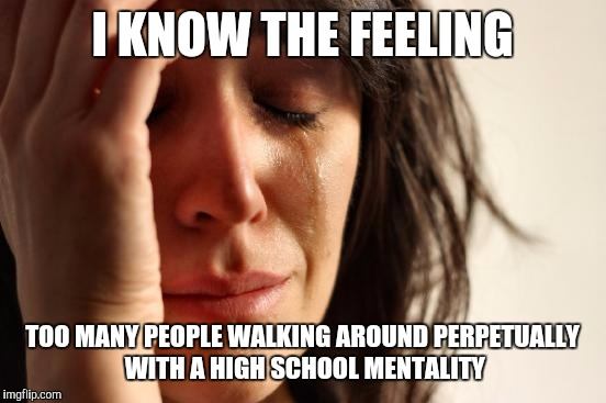First World Problems Meme | I KNOW THE FEELING TOO MANY PEOPLE WALKING AROUND PERPETUALLY WITH A HIGH SCHOOL MENTALITY | image tagged in memes,first world problems | made w/ Imgflip meme maker