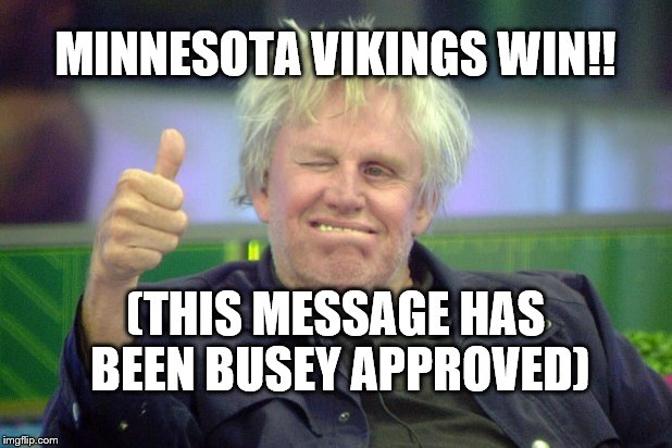 Minnesota Vikings Win!! | MINNESOTA VIKINGS WIN!! (THIS MESSAGE HAS BEEN BUSEY APPROVED) | image tagged in gary busey,minnesota vikings,vikings win | made w/ Imgflip meme maker