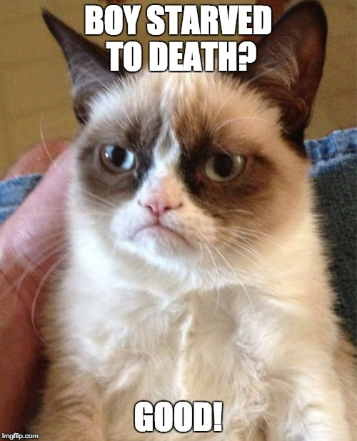 Grumpy Cat Meme | BOY STARVED TO DEATH? GOOD! | image tagged in memes,grumpy cat | made w/ Imgflip meme maker