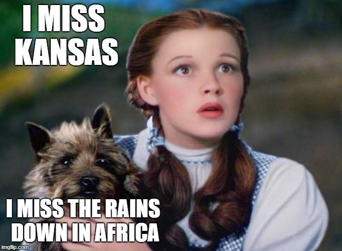 Obvious Repost is Obvious. | I MISS KANSAS I MISS THE RAINS DOWN IN AFRICA | image tagged in dorothy,toto,kansas,rains,africa | made w/ Imgflip meme maker