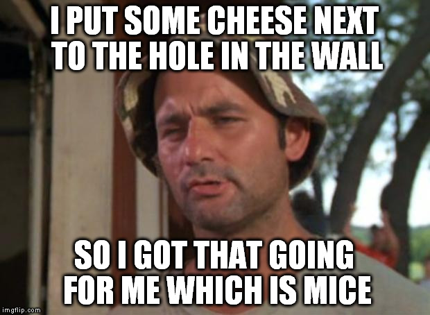 So I Got That Goin For Me Which Is Nice Meme | I PUT SOME CHEESE NEXT TO THE HOLE IN THE WALL SO I GOT THAT GOING FOR ME WHICH IS MICE | image tagged in memes,so i got that goin for me which is nice | made w/ Imgflip meme maker