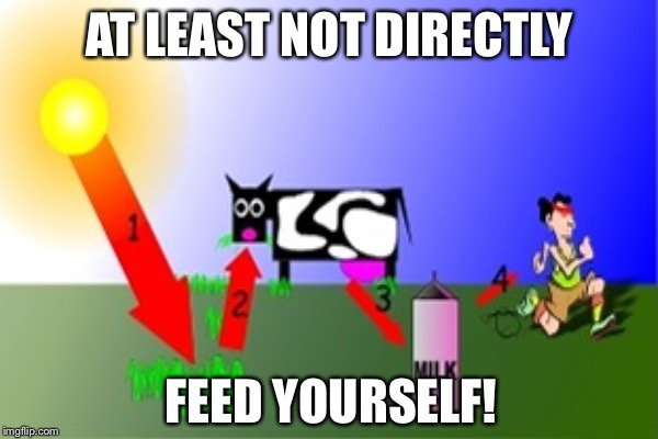 AT LEAST NOT DIRECTLY FEED YOURSELF! | made w/ Imgflip meme maker