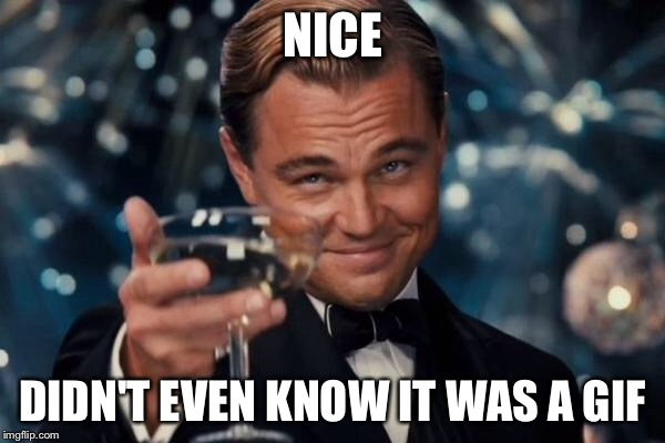 Leonardo Dicaprio Cheers Meme | NICE DIDN'T EVEN KNOW IT WAS A GIF | image tagged in memes,leonardo dicaprio cheers | made w/ Imgflip meme maker
