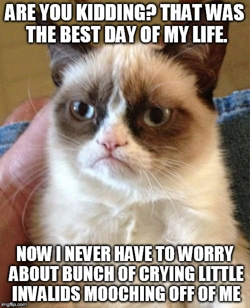 Grumpy Cat Meme | ARE YOU KIDDING? THAT WAS THE BEST DAY OF MY LIFE. NOW I NEVER HAVE TO WORRY ABOUT BUNCH OF CRYING LITTLE INVALIDS MOOCHING OFF OF ME | image tagged in memes,grumpy cat | made w/ Imgflip meme maker