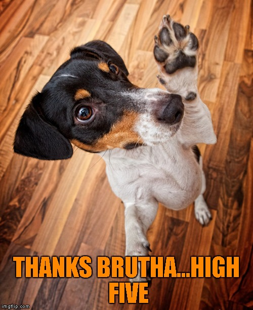 THANKS BRUTHA...HIGH FIVE | made w/ Imgflip meme maker