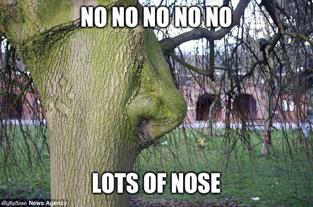 NO NO NO NO NO LOTS OF NOSE | made w/ Imgflip meme maker