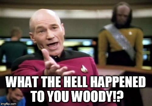 Picard Wtf Meme | WHAT THE HELL HAPPENED TO YOU WOODY!? | image tagged in memes,picard wtf | made w/ Imgflip meme maker