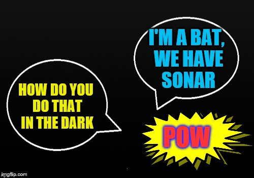 Batman slapping Robin. Inspired by DashHopes and ShabbyRose's hilarious exchange: https://imgflip.com/i/1agczn | HOW DO YOU DO THAT IN THE DARK I'M A BAT, WE HAVE SONAR POW | image tagged in memes,batman slapping robin,nananananana | made w/ Imgflip meme maker