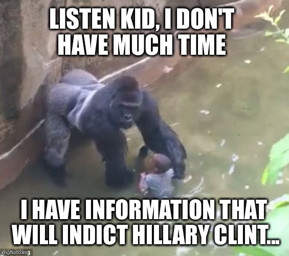 This made me laugh.  Sorry if it's a repost. |  LISTEN KID, I DON'T HAVE MUCH TIME; I HAVE INFORMATION THAT WILL INDICT HILLARY CLINT... | image tagged in harambe,memes,funny,hillary,fbi,email scandal | made w/ Imgflip meme maker