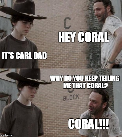 1ajqp0 rick and carl meme imgflip