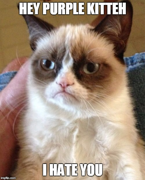 Grumpy Cat Meme | HEY PURPLE KITTEH I HATE YOU | image tagged in memes,grumpy cat | made w/ Imgflip meme maker