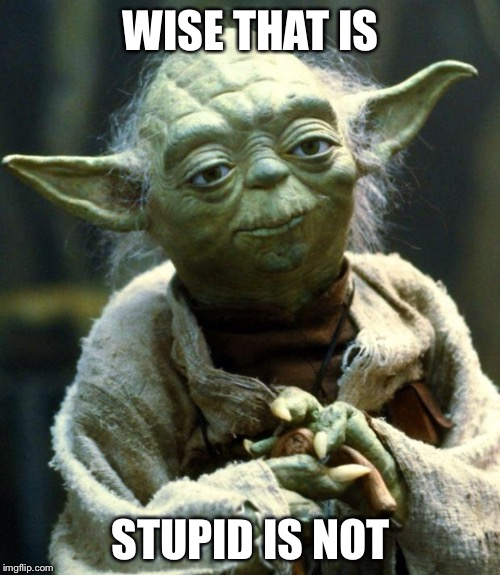 Star Wars Yoda Meme | WISE THAT IS STUPID IS NOT | image tagged in memes,star wars yoda | made w/ Imgflip meme maker