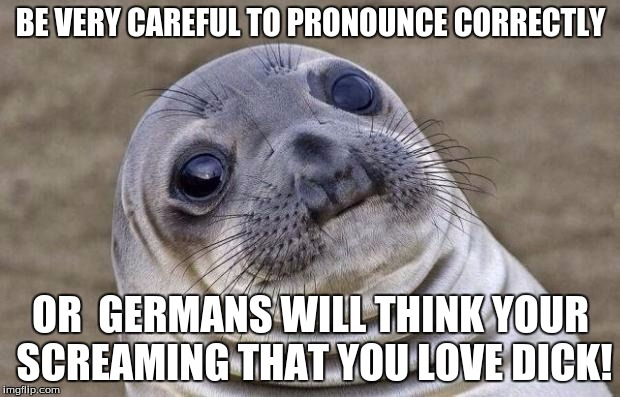 Awkward Moment Sealion Meme | BE VERY CAREFUL TO PRONOUNCE CORRECTLY OR  GERMANS WILL THINK YOUR SCREAMING THAT YOU LOVE DICK! | image tagged in memes,awkward moment sealion | made w/ Imgflip meme maker
