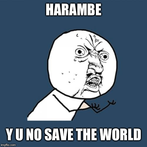 Y U No Meme | HARAMBE Y U NO SAVE THE WORLD | image tagged in memes,y u no | made w/ Imgflip meme maker