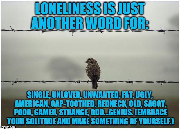 We can't all be cookie cutter chic...I prefer to be the cookie that got dropped on the floor... | LONELINESS IS JUST ANOTHER WORD FOR: SINGLE, UNLOVED, UNWANTED, FAT, UGLY, AMERICAN, GAP-TOOTHED, REDNECK, OLD, SAGGY, POOR, GAMER, STRANGE, | image tagged in lonely,memes,sad,single,genius,loneliness | made w/ Imgflip meme maker