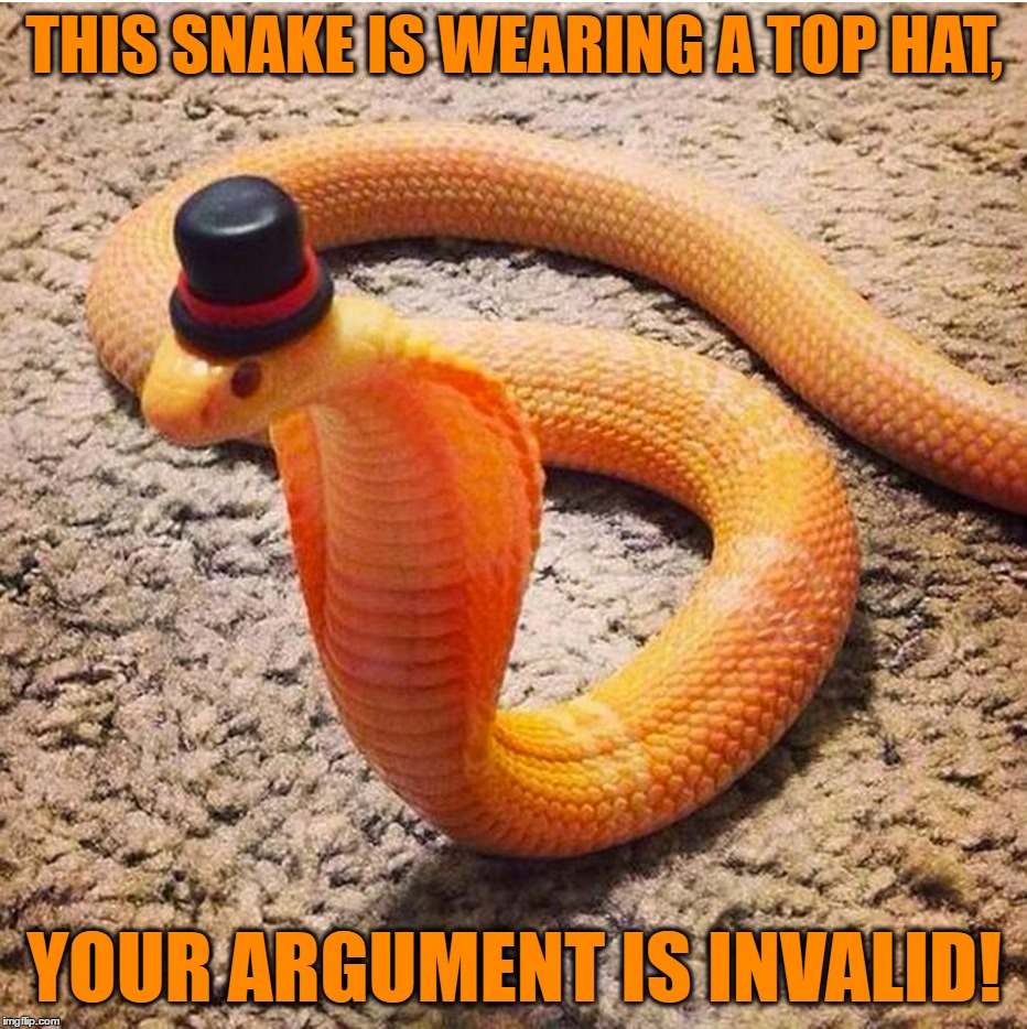 A Snake With Class | THIS SNAKE IS WEARING A TOP HAT, YOUR ARGUMENT IS INVALID! | image tagged in memes,funny,snake,top hat,your argument is invalid,classy | made w/ Imgflip meme maker