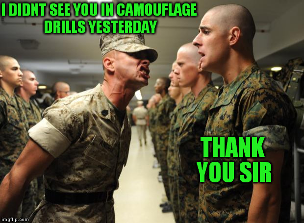 drill sergeant | I DIDNT SEE YOU IN CAMOUFLAGE DRILLS YESTERDAY THANK YOU SIR | image tagged in drill sergeant | made w/ Imgflip meme maker