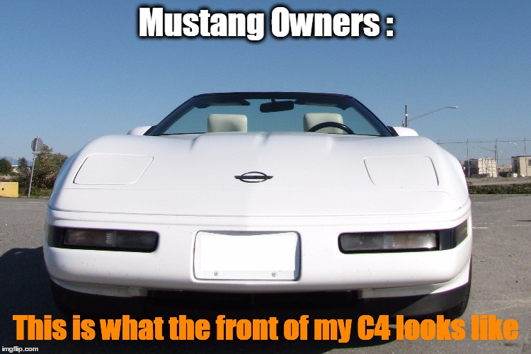 mustang owners be like