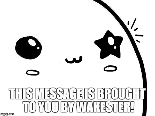 THIS MESSAGE IS BROUGHT TO YOU BY WAKESTER! | made w/ Imgflip meme maker