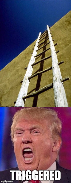 Came to make a meme today, and this is what came out. | TRIGGERED | image tagged in donald trump,triggered,great wall of trump,ladders,they could dig a hole too | made w/ Imgflip meme maker