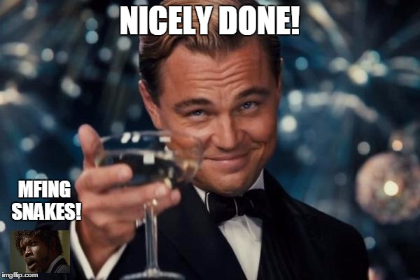 Leonardo Dicaprio Cheers Meme | NICELY DONE! MFING SNAKES! | image tagged in memes,leonardo dicaprio cheers | made w/ Imgflip meme maker