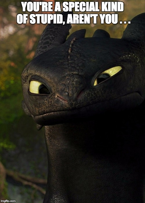 YOU'RE A SPECIAL KIND OF STUPID, AREN'T YOU . . . | image tagged in toothless,how to train your dragon | made w/ Imgflip meme maker