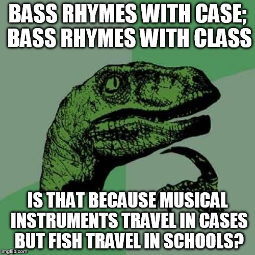 Philosoraptor Meme | BASS RHYMES WITH CASE; BASS RHYMES WITH CLASS IS THAT BECAUSE MUSICAL INSTRUMENTS TRAVEL IN CASES BUT FISH TRAVEL IN SCHOOLS? | image tagged in memes,philosoraptor | made w/ Imgflip meme maker