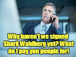 Why haven't we signed Shark Wahlberg yet? What do I pay you people for! | made w/ Imgflip meme maker
