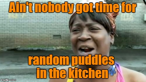Aint Nobody Got Time For That Meme | Ain't nobody got time for random puddles in the kitchen | image tagged in memes,aint nobody got time for that | made w/ Imgflip meme maker