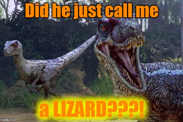 Did he just call me a LIZARD???! | made w/ Imgflip meme maker