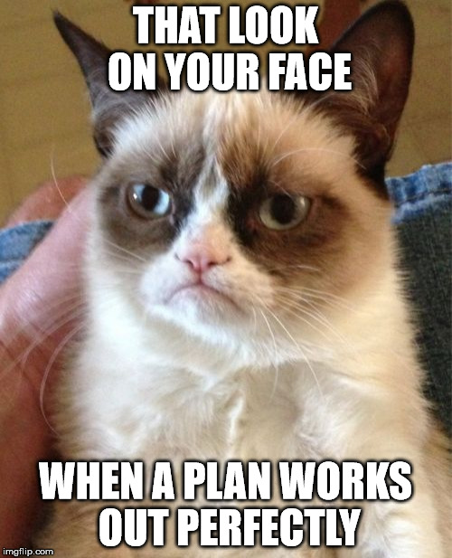 Grumpy Cat Meme | THAT LOOK ON YOUR FACE WHEN A PLAN WORKS OUT PERFECTLY | image tagged in memes,grumpy cat | made w/ Imgflip meme maker