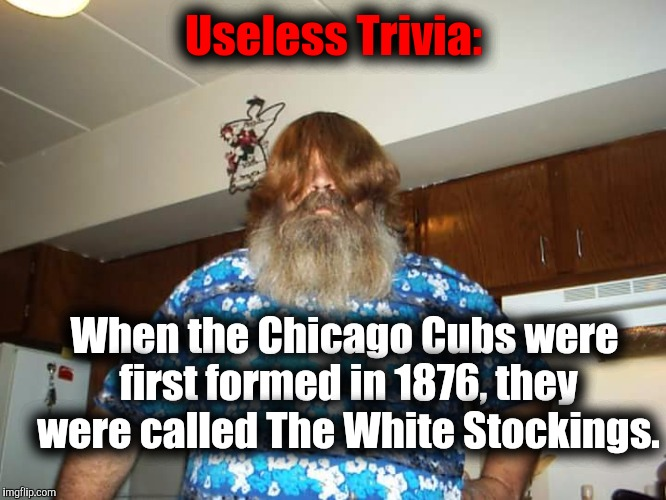 Swiggy Itt | Useless Trivia: When the Chicago Cubs were first formed in 1876, they were called The White Stockings. | image tagged in swiggy itt | made w/ Imgflip meme maker