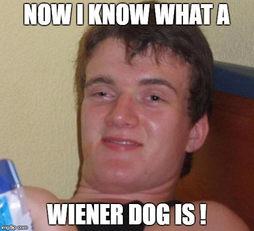 10 Guy Meme | NOW I KNOW WHAT A WIENER DOG IS ! | image tagged in memes,10 guy | made w/ Imgflip meme maker