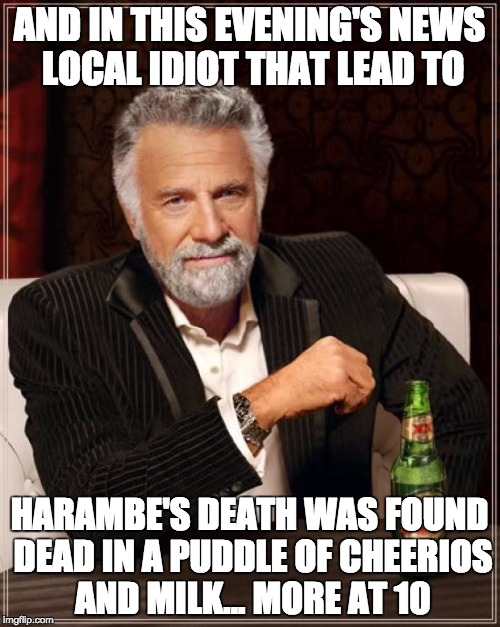 The Most Interesting Man In The World Meme | AND IN THIS EVENING'S NEWS LOCAL IDIOT THAT LEAD TO HARAMBE'S DEATH WAS FOUND DEAD IN A PUDDLE OF CHEERIOS AND MILK... MORE AT 10 | image tagged in memes,the most interesting man in the world | made w/ Imgflip meme maker
