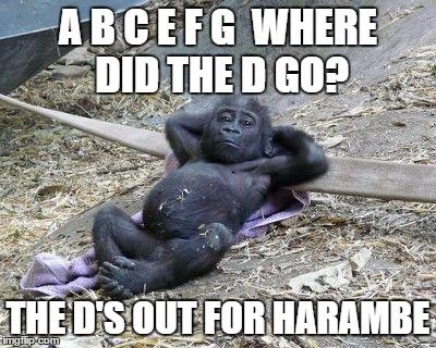 gorilla shot relax zoo harambe imgflip
