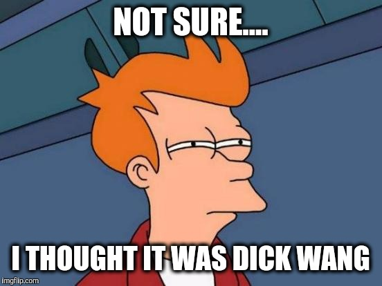 Futurama Fry Meme | NOT SURE.... I THOUGHT IT WAS DICK WANG | image tagged in memes,futurama fry | made w/ Imgflip meme maker