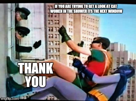 IF YOU ARE TRYING TO GET A LOOK AT CAT WOMEN IN THE SHOWER ITS THE NEXT WINDOW THANK YOU | made w/ Imgflip meme maker