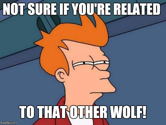 Futurama Fry Meme | NOT SURE IF YOU'RE RELATED TO THAT OTHER WOLF! | image tagged in memes,futurama fry | made w/ Imgflip meme maker