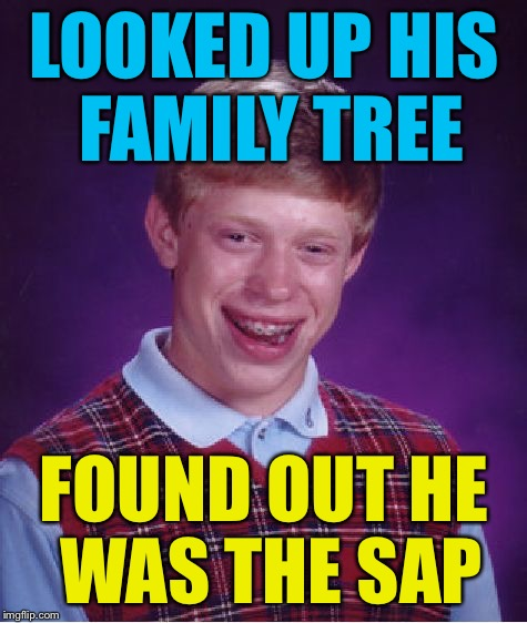Bad Luck Brian Meme | LOOKED UP HIS FAMILY TREE FOUND OUT HE WAS THE SAP | image tagged in memes,bad luck brian | made w/ Imgflip meme maker