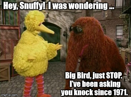 Big Bird always just walks in without an invitation ... | Hey, Snuffy!  I was wondering ... Big Bird, just STOP.  I've been asking you knock since 1971. | image tagged in memes,big bird and snuffy | made w/ Imgflip meme maker