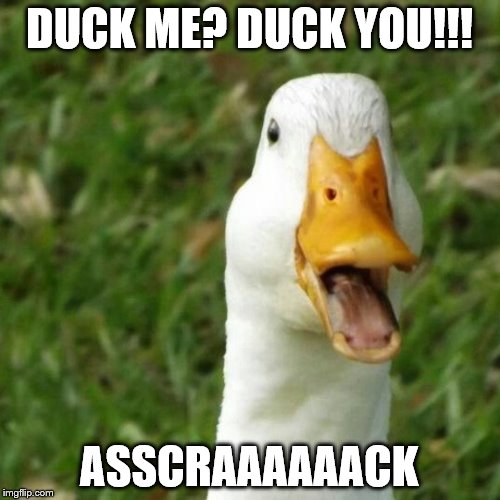 DUCK ME? DUCK YOU!!! ASSCRAAAAAACK | made w/ Imgflip meme maker