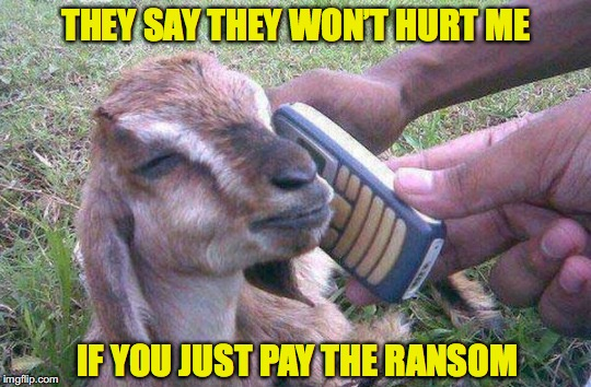 Taken 4 |  THEY SAY THEY WON'T HURT ME; IF YOU JUST PAY THE RANSOM | image tagged in funny goat,kidnap,ransom | made w/ Imgflip meme maker