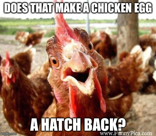 DOES THAT MAKE A CHICKEN EGG A HATCH BACK? | made w/ Imgflip meme maker
