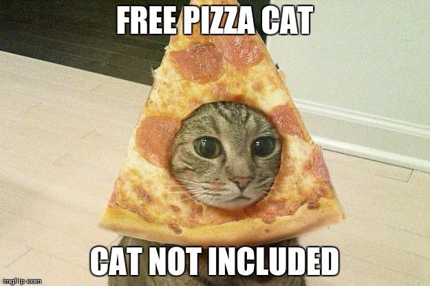1asms7 free pizza cat imgflip,Pizza Cat Meme